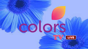 How to Watch Colors TV Online in USA