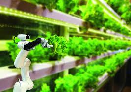 Sáng kiến công nông nghiệp thông minh cho đô thị thông minh