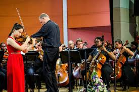 Image result for violin concert