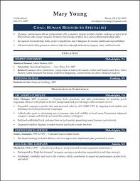 Virtual Resumes 15 Entry Level Project Management Resume Samples Raj