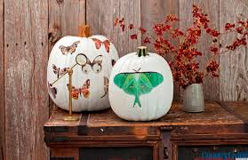 Halloween Decorations Halloween Decorations Moth Decal Pumpkins From Country Living