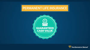 It uses cookies to ensure that it gives you the best experience on our website. Permanent Life Insurance A Unique Asset Northwestern Mutual