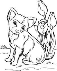 Kleurplaten Dieren Leuke Van Uitgezocht Cute Dog Pictures To Print