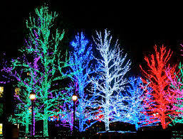 Christmas Tree Lights Flasher Unit The Flash Controller Shop For Christmas Light Controllers 4