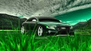 audi s5 crystal nature car