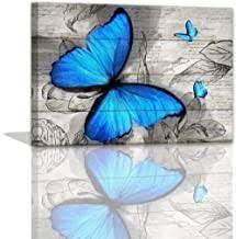 Amazon Com Butterfly Bathroom Decor