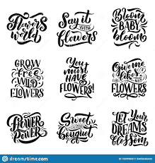 Design T Shirt Quotes Lettering Quotes About Flowers Illustration Made In Vector
