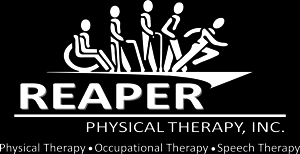 In other words, if a lawsuit is brought against you as a pt for a number of valid reasons, your physical therapy liability insurance will stop these. Home Reaper Physical Therapy