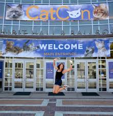 CATCON 2018 DRAWS 16,000+ ATTENDEES, THROWS A SURPRISE WEDDING, GETS A  RECORD 159 CATS ADOPTED - CatCon 2020