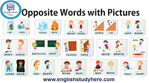 Words With Photo Opposite Words With Pictures English Study Here
