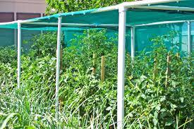 garden shade cloth. Shade Cloth For Vegetable Gardens Amazing Of Garden E