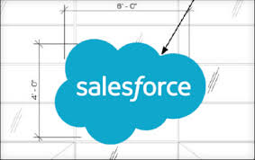 Salesforce Logo Branding_guidelines