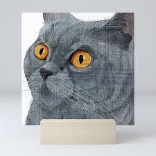 Blue British Shorthair Cat Mini Art Print By Katherineblower
