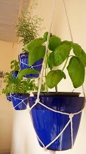 own indoor hanging herb garden