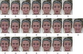Compound Facial Expressions Of Emotion Pnas