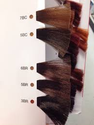 Matrix Hair Color Chart 2019 Matrix So Color Brown Copper And Brown Red Swatches In 2019