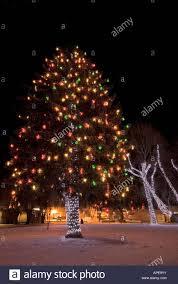 Zilker Park Christmas Lights Christmas Lights In Park Stock Photos Christmas Lights In