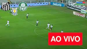 Assistir Santos x Palmeiras AO VIVO na TV e Online HD – TNT e EI PLUS    Papillon filme, Futebol gratis, Jogos do brasileirão