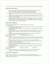 Resume Examples Financial Analyst Financial Analyst Job Resume