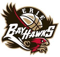 Erie BayHawks Primary Logo - NBA Gatorade League (G-League) - Chris ...
