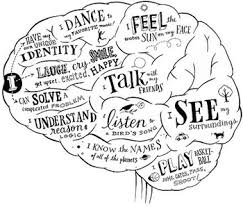 original 302642 1 draw the brain and what occ by anatomyteach teachers pay teachers on nervous system printable