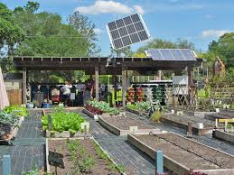 solar pv panels and gardening beds at the sustainable living project