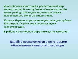 Животный мир Чёрного моря  3 Многообразен животный и растительный мир Черного моря