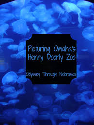 Friday Photography: Omaha's Henry Doorly Zoo ⋆ Odyssey Through ...