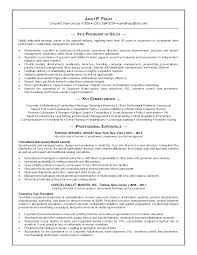 Vp Marketing Resume Free Resume Example And Writing Download