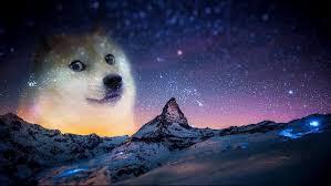 doge wallpaper 1920x1080. Delighful Doge Doge Wallpaper 1920x1080 With Doge Wallpaper 0