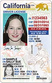 California Identification And Redesign Driver License Card