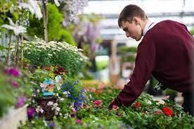 paradise park garden centre tates of