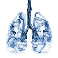 มะเร็งปอด ไม่สูบก็เสี่ยง | โรงพยาบาลศิริราช ปิยมหาราชการุณย์