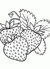 Small Picture Top 86 Strawberry Coloring Pages Free Coloring Page