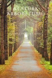 Atatürk Arboretumu Nerede? Giriş Ücreti | Detaylı Gezi Rehberi, 2020 |  Geziler, Seyahat rehberi, Istanbul