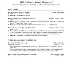 How To Write A Resumes What To Include In A Good Resumes How To