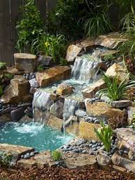 lovely backyard ponds and water garden