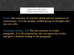 essay a piece of writing that gives your thoughts commentary 6 chunk
