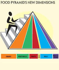 sample college food pyramid essay people who are healthy are likely to have the background of being and staying drug