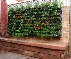 Small Picture 36 best Organic wall garden images on Pinterest Walled garden