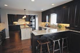 Image Remodel 12 Custom Black Kitchen Cabinets With Dark Wood Floors On Budget Everything Kitchen Online 12 Custom Black Kitchen Cabinets With Dark Wood Floors On Budget