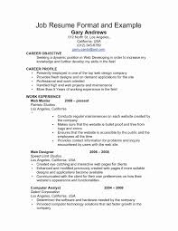Updated Resume Formats Lovely Professional Resume Format Examples