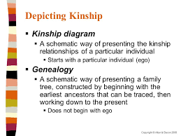 Kinship And Domestic Life Chapter 6 Ppt Video Online