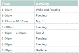 Daily Routine Chart For 2 Year Old Nap Schedules 5 Months To 25 Months Taking Cara Babies