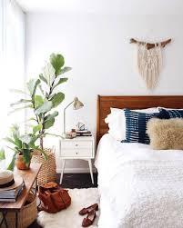 Decorating: Natural Indoor Plant For Living Room - DIY Plants