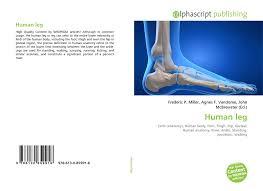 Leg Wikipedia Human Leg 978 613 0 85991 6 6130859910 9786130859916