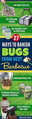 27 Ways to Banish Bugs From Next Barbecue. Tips And TricksFlies Repellent  OutdoorBest Mosquito ...