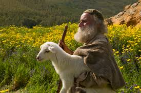 Image result for sheep and shepherd pictures