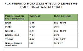 Fly Rod Weight Chart Cyberbears Fly Fishing Beads Hooks And Fly Rod Weights
