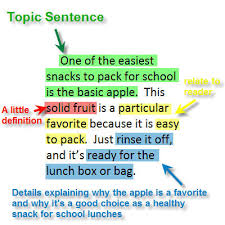 writing a paragraph lessons teach